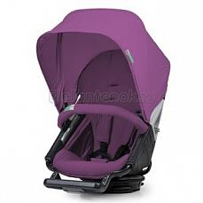 Orbit Baby Color Pack grape